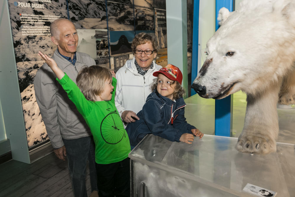 Arktikum: A ticket to explore the heart of the Arctic Circle - Scan Magazine