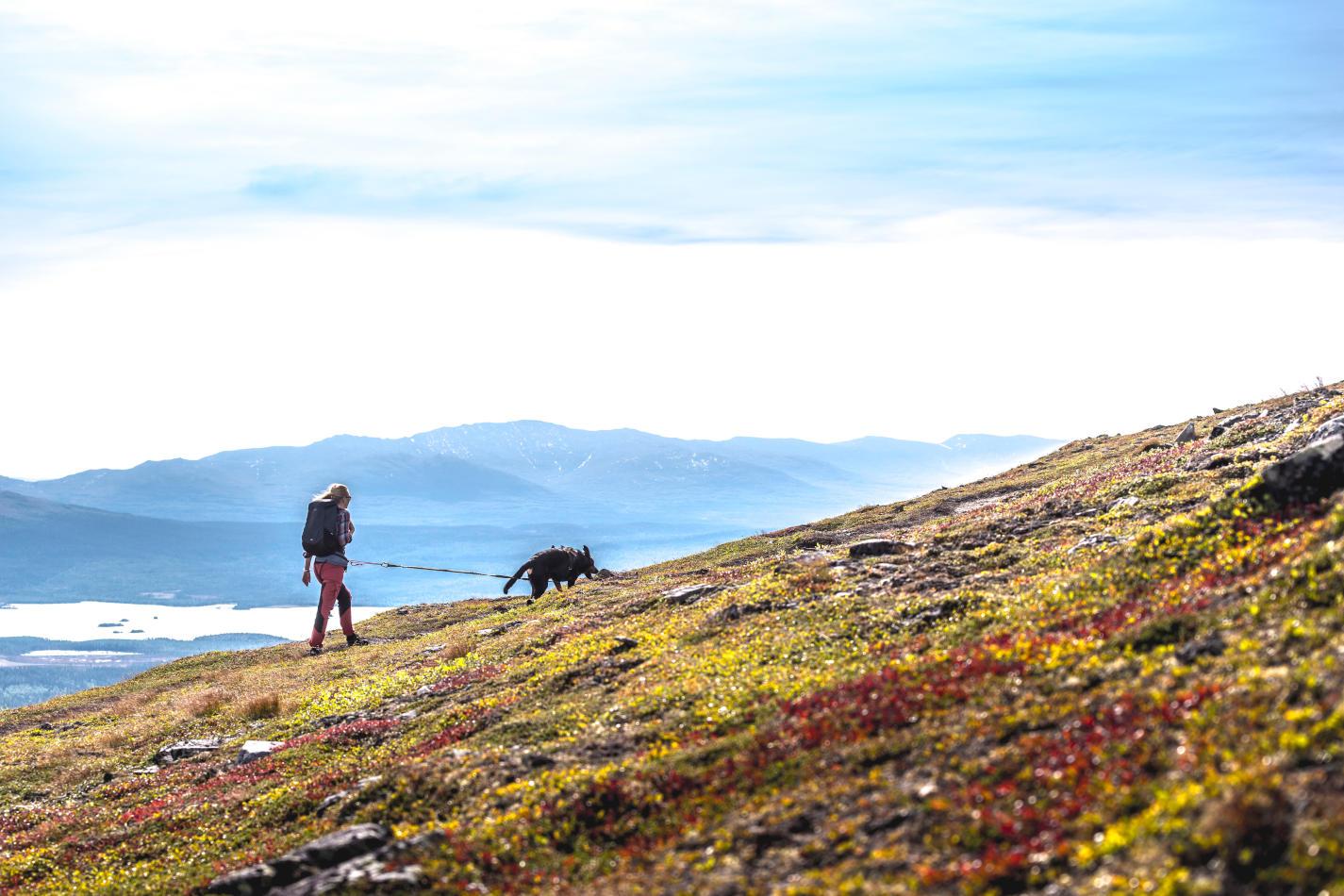 Trillevallen | A classic winter oasis | Scan Magazine