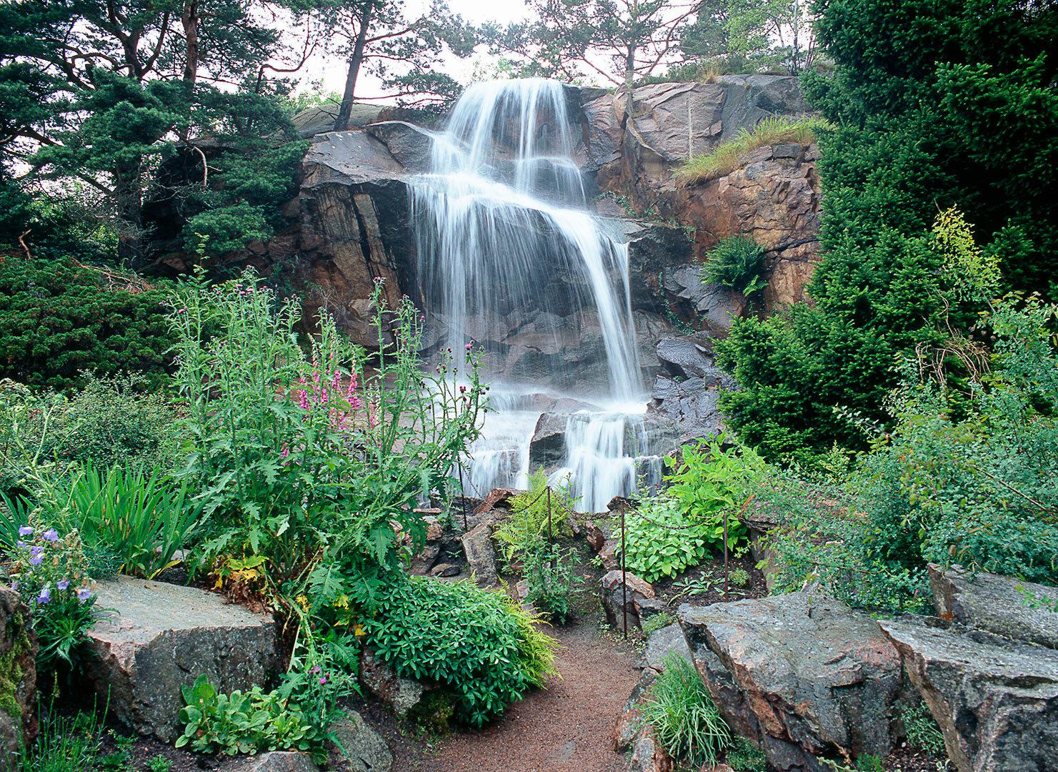 2_Gothenburg Botanical Garden GBG_PRIO 2_Photo Eva S. Andersson