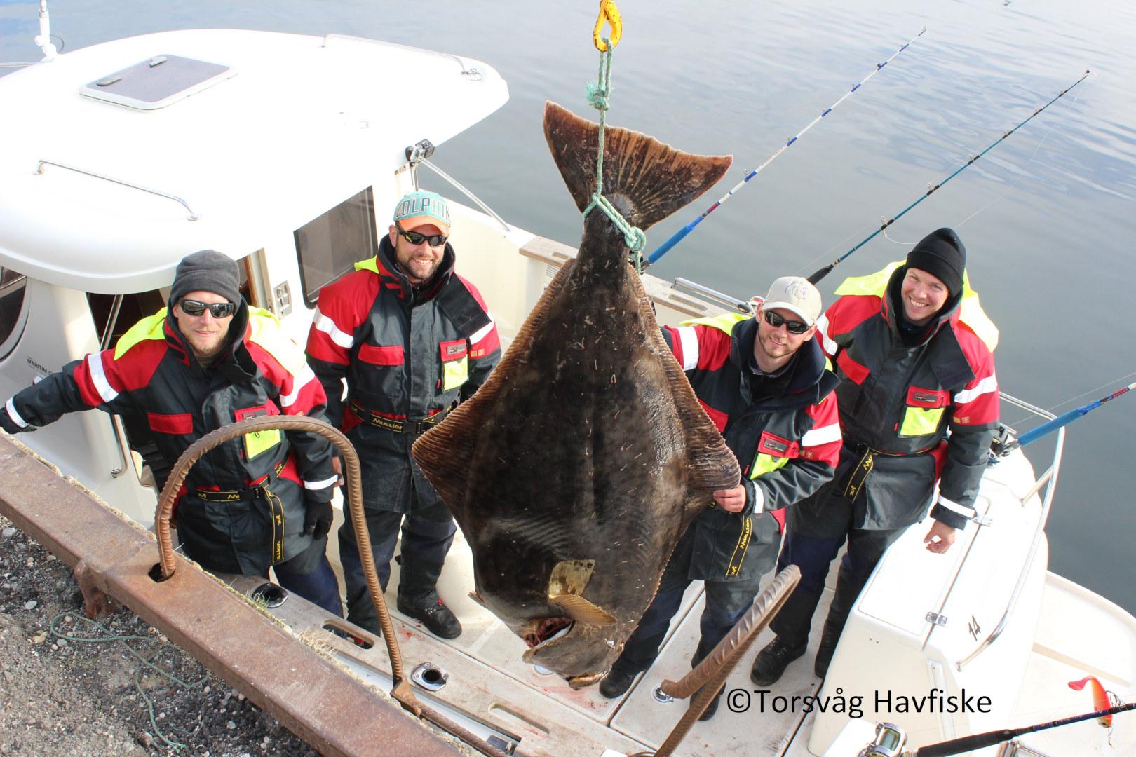 Visit Karlsoy_2_fishing_Torsvåg Havfiske