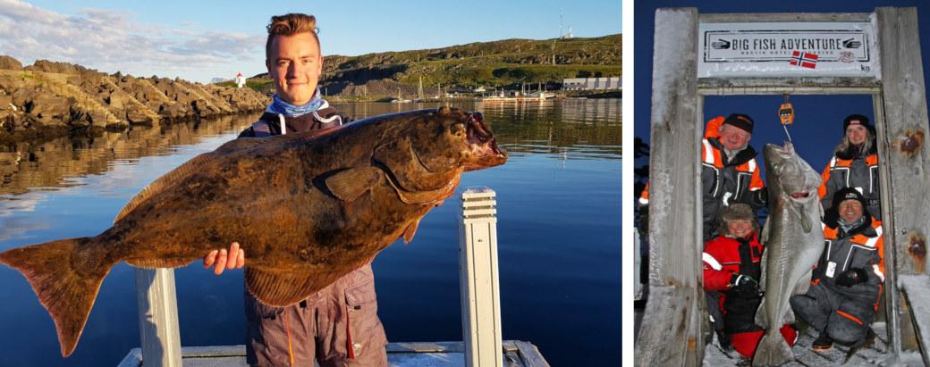 big fish-collage