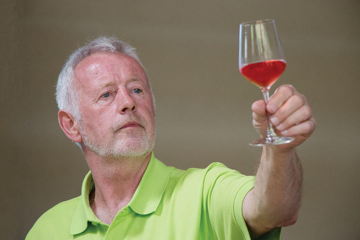 Agger Vin: Making wine in Viking land, Scan Magazine