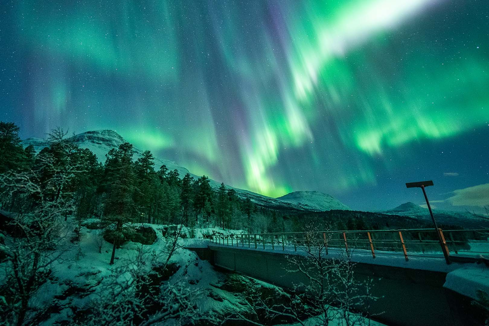 Arctic Experience: A unique date with the dancing northern lights, Scan Magazine