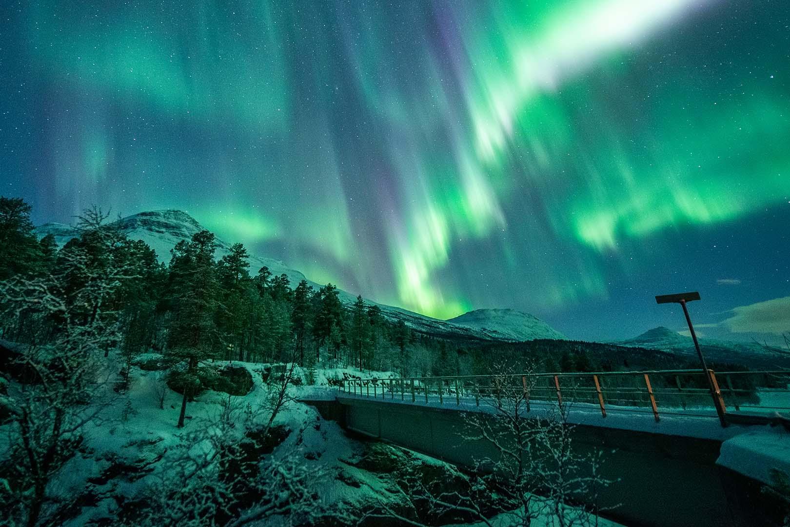 Northern Lights dating