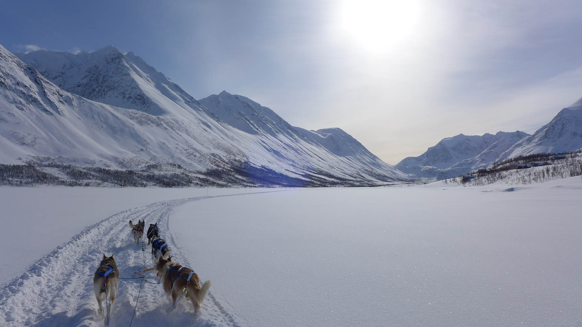 Lyngen Experience: A gem in the heart of the Lyngen Alps, Scan Magazine