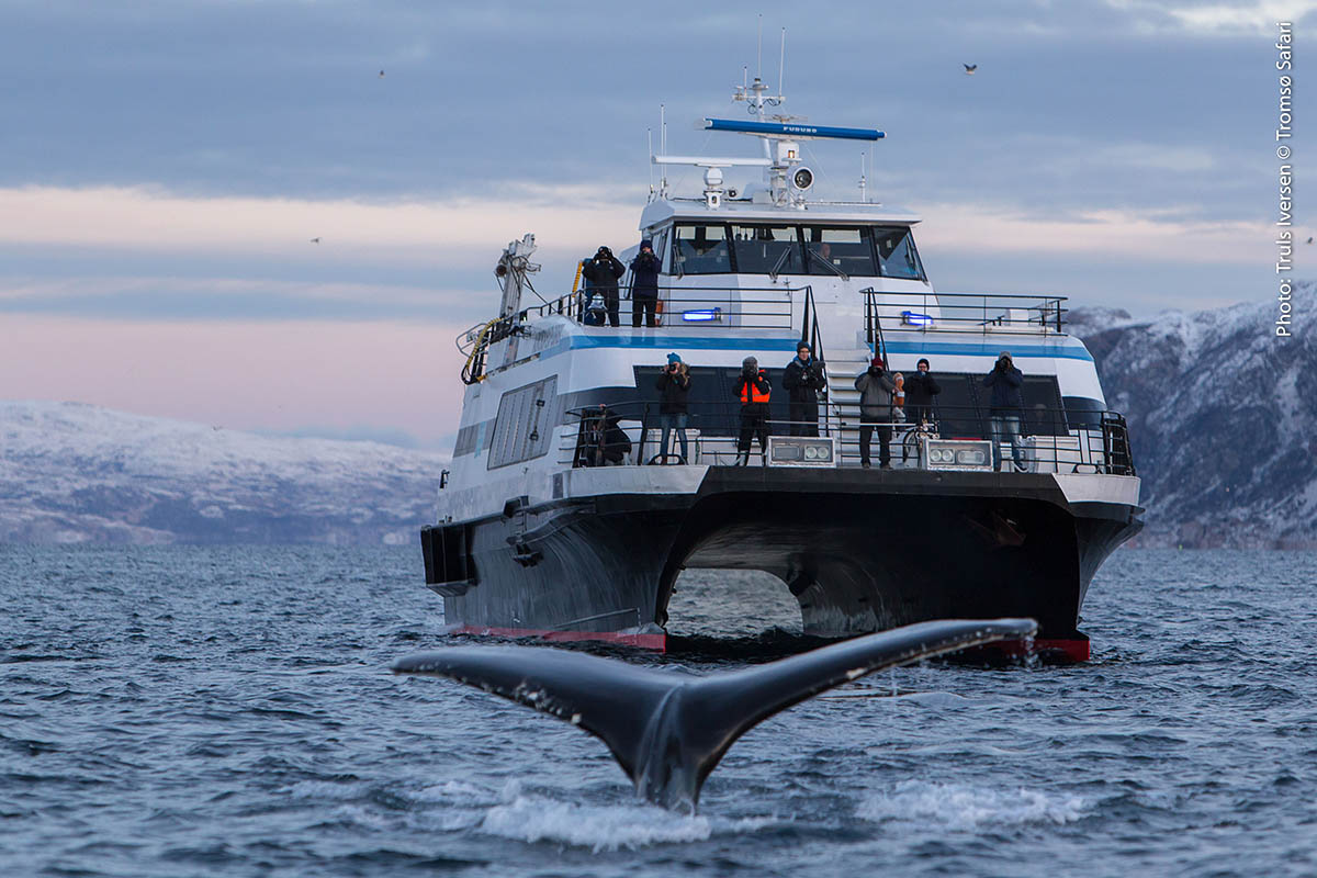 Arctic Expedition: Become an Arctic explorer, Scan Magazine