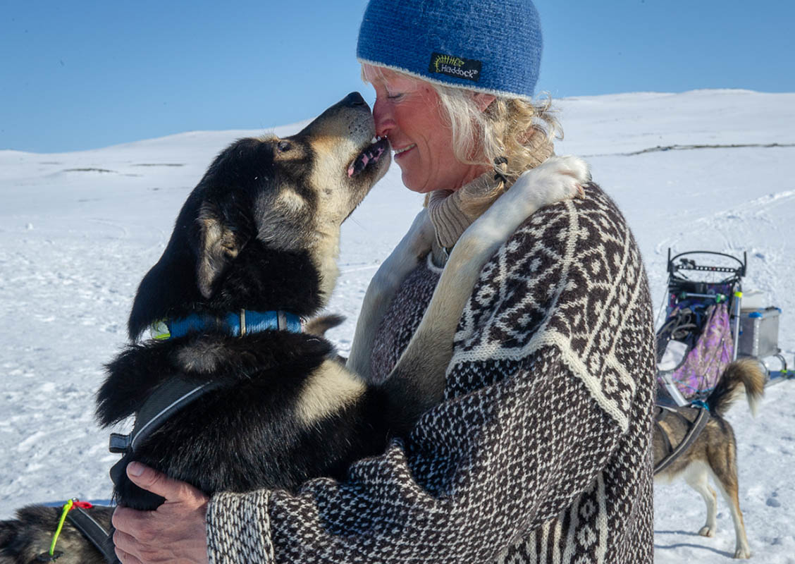 Geilo Husky: Dog sledding in Geilo, the ultimate Norwegian winter adventure, Scan Magazine