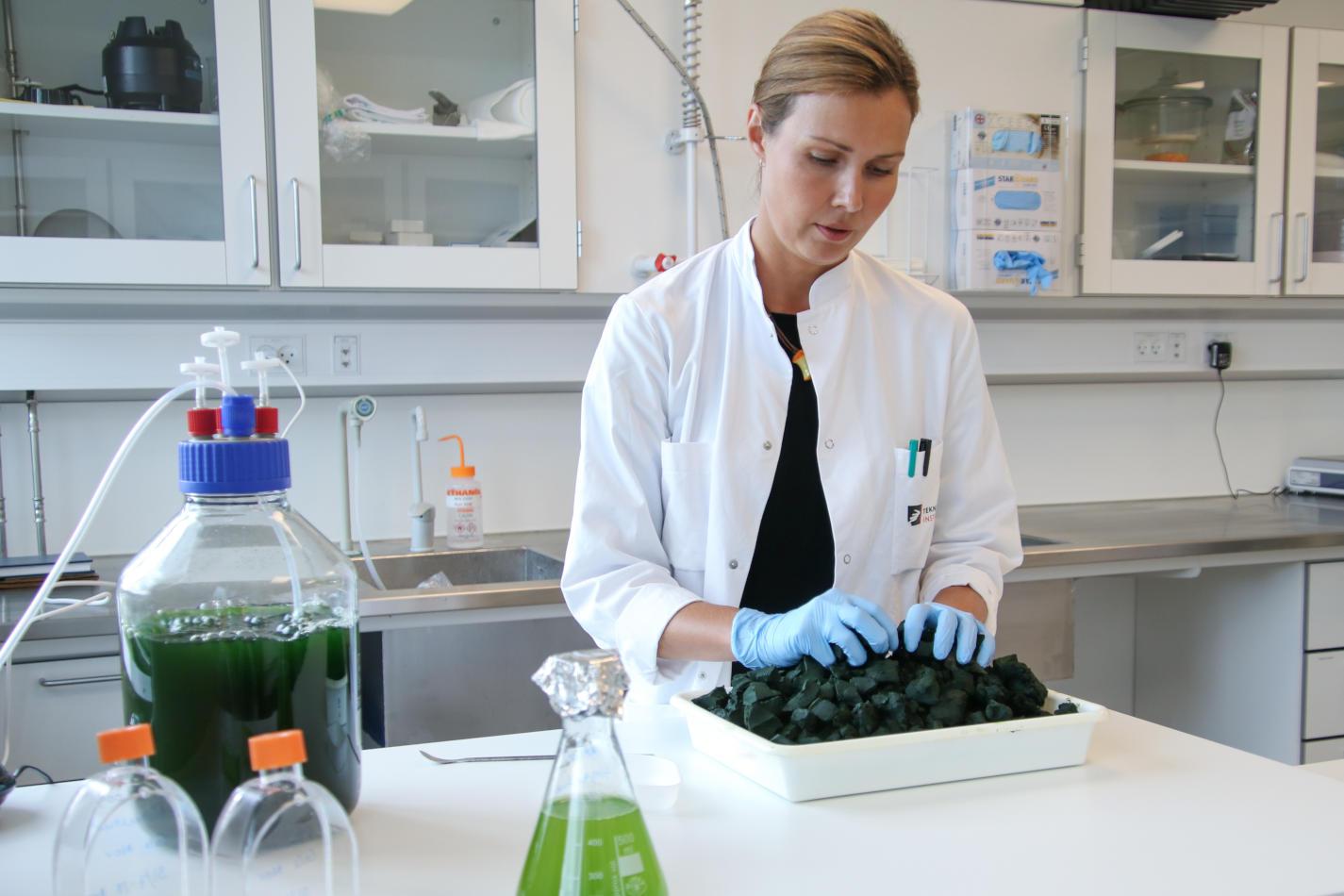 Danish Technological Institute , What's for dinner, Scan Magazine