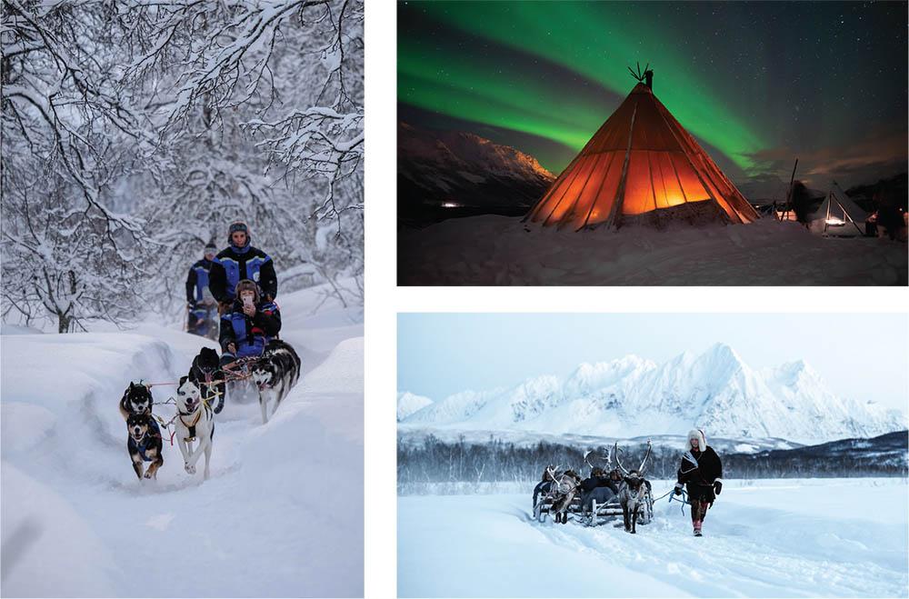 Tromsø Safari: Exploring Scandinavian landscape and wildlife