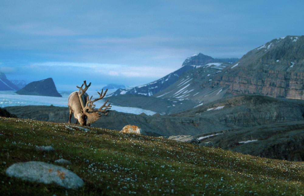 Norwegian landscape as artistic inspiration | Scan Magazine