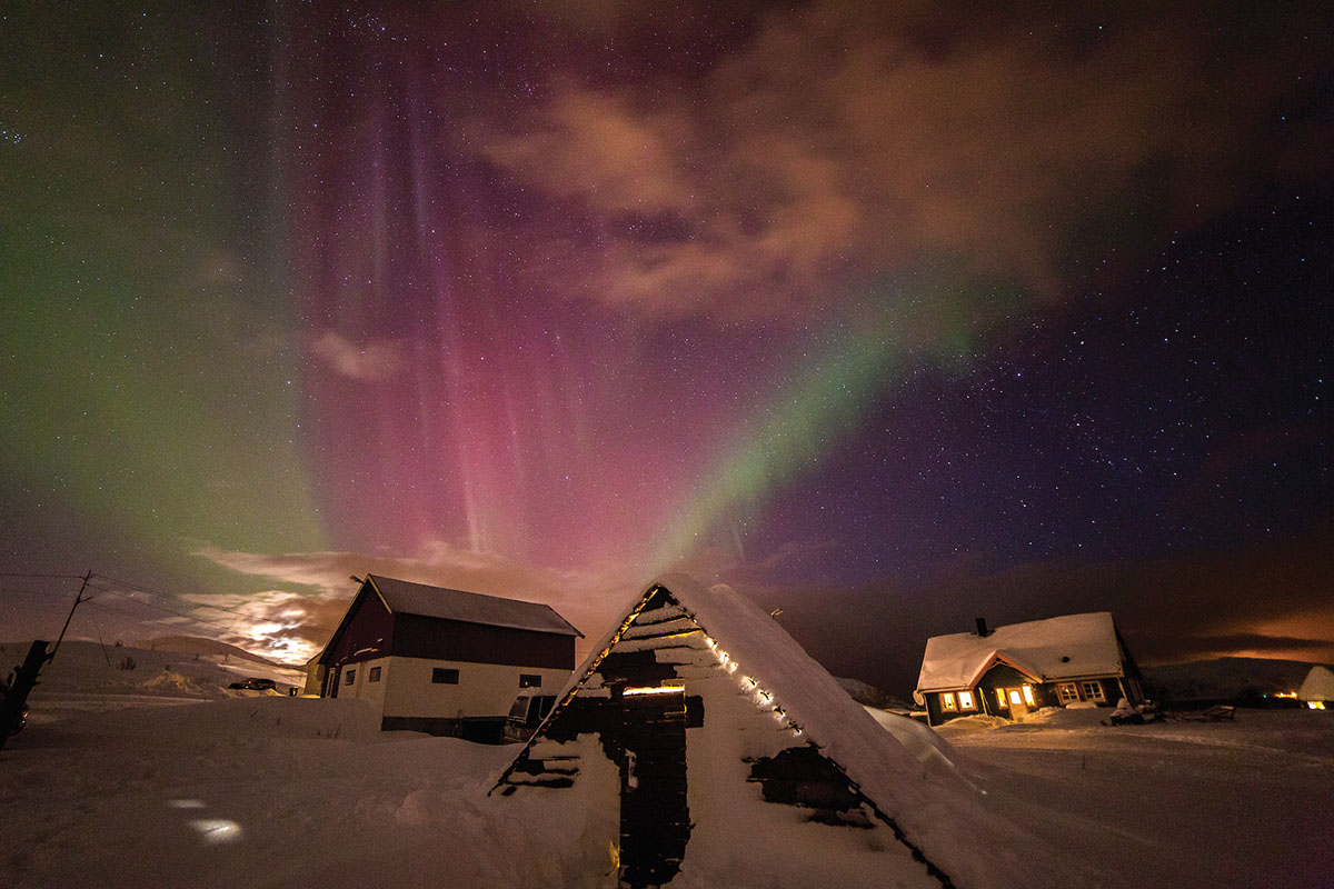 FjordTours: Be environmentally friendly while experiencing the northern lights - Scan Magazine