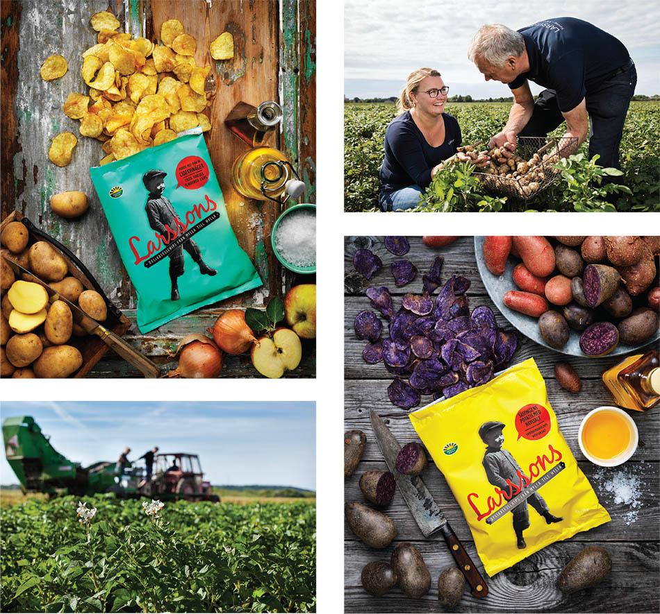 Larsviken: Future proofing potato cultivation