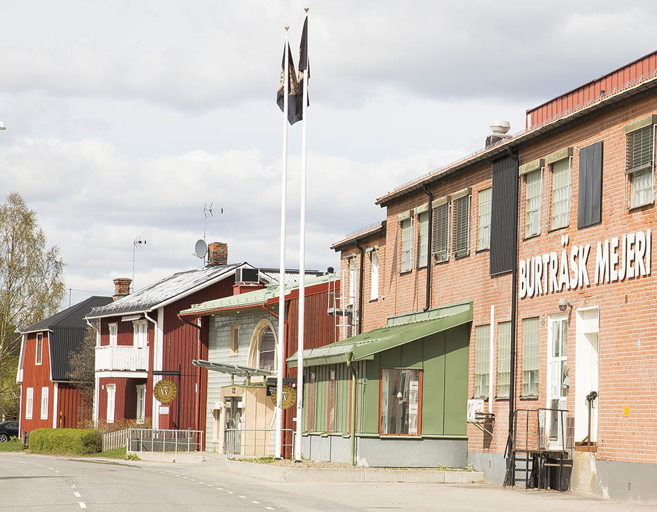 Västerbottensost | a love story between a country and a cheese